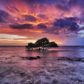 by Rizal Ismail - Landscapes Sunsets & Sunrises