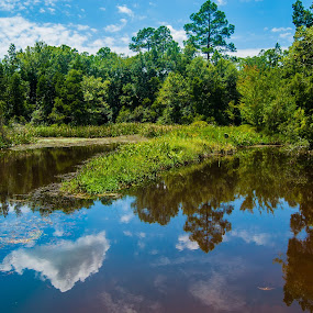 Reflected River by Jon Cody - Landscapes Waterscapes ( clouds, water, reflection, landscape, river,  )