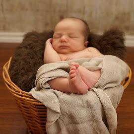 by Helen Bagley - Babies & Children Hands & Feet ( newborn photography, newborn shoot, feet, baby, baby shoot, boy, newborn )