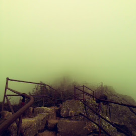 Stairs to the Top... by Sudipa Bhattacharya - Instagram & Mobile iPhone