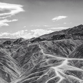 Death Valley Lines by Diane Loos - Landscapes Deserts