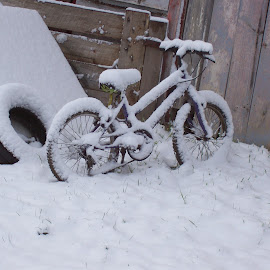 Not Today by Russell Benington - Transportation Bicycles ( #cold, #snow, #transport, #bike, #otago )