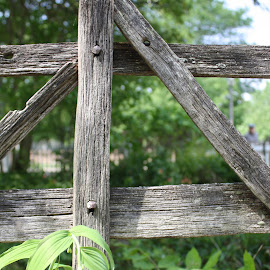 Old fence by Mark  Worden - Buildings & Architecture Other Exteriors ( old wood, fences )