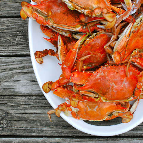 Steamed Maryland Blue Crabs