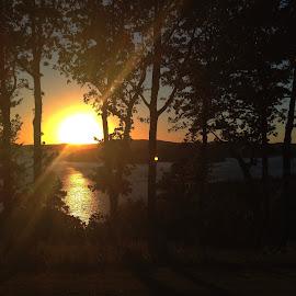 Sunset on Beaver Lake by Zeralda La Grange - Instagram & Mobile iPhone ( #landscape, #lake, #nature, #trees, #iphone, #sunset, #water )