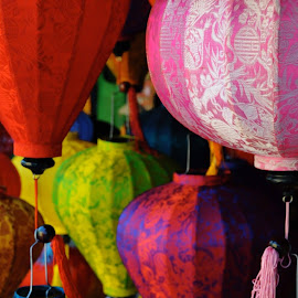 Lanterns of Hoi An by Rose Hawksford - City,  Street & Park  Markets & Shops