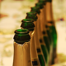 bottles by Charles KAVYS - Food & Drink Alcohol & Drinks ( bohemia sekt, green, empty, gold, bottles,  )