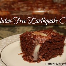Gluten-Free Earthquake Cake