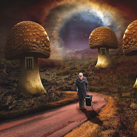 Dream Land by Juprinaldi Photoart  - Digital Art Places ( moshroom        rock           stone                   portal                             garden                           street                  oldman )