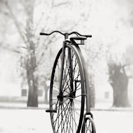by Sanja Dedić - Transportation Bicycles