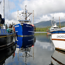Miss Tatum by Keith Sutherland - Transportation Boats ( calm, fish, harbour, boat )