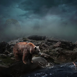 I See you Part II by Errys Wiskan - Digital Art Animals ( bear, still life, digital art, fine art, manipulation )