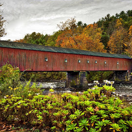 West Cornwall Bridge by Diane Clontz - Novices Only Landscapes ( connecticut, fall colors, covered bridge, landscapes, west cornwall )