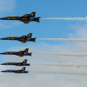 Blue Angels by Eladio Gomes - Transportation Airplanes ( sky, airplane, navy, jet, fighter, blue angels, air show,  )
