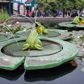 Spitting frogs by Hassan Jalal - City,  Street & Park  Amusement Parks ( water, amusement park, parks, frogs, pond )