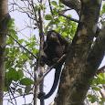 Life in Costa Rica