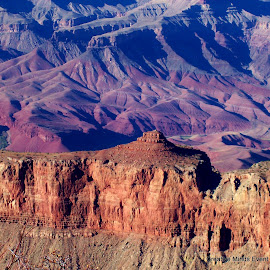 The Grand Canyon  by Randi Leimbach - Landscapes Mountains & Hills ( 2009 )