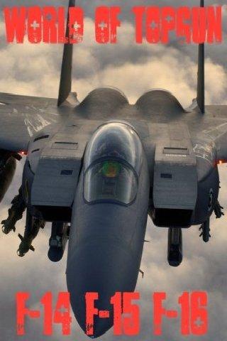世界の戦闘機図鑑 F-14 F-15 F-16