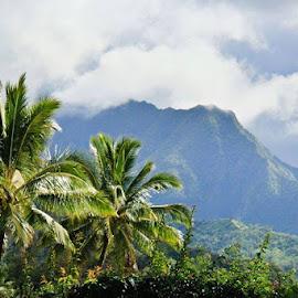 by Grace Duran - Landscapes Mountains & Hills