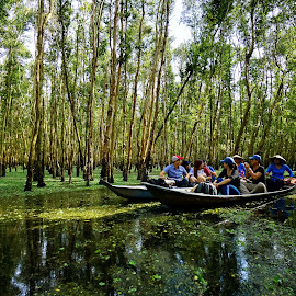 On boat visiting Tra Su Cajuput by Quang Bảo - Landscapes Travel ( reservoir, tra su, tourist, tree, nature, cajuput, forest, tourism, travel, boat, canal, mangrove )