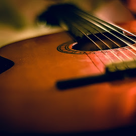 instrument of emotion by Jr. Marina - Artistic Objects Musical Instruments ( music, macro, wood, sound, melody, strings, guitar, instrument, emotion,  )