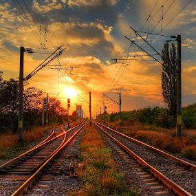 perfect sunset by Cornelius D - Transportation Railway Tracks