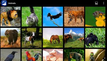Screenshot of Animal Images & Animal Sounds