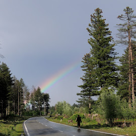 Rainbow colours by Maharajkar Isher - Landscapes Weather ( rainbow. highway, forest,  )