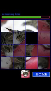 CAT15Puzzle - screenshot