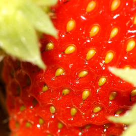 Strawberry  by Andreas Müller - Nature Up Close Gardens & Produce ( macro, close up, makro, strawberry, closeup )