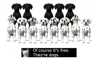 Screenshot of Piano Pups Free!