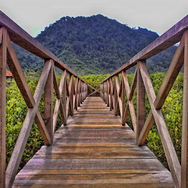 Wood Brige by Rodhifan Fdp - Instagram & Mobile Other