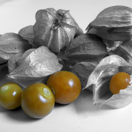 Cape Gooseberry. by Esther Van De Belt - Food & Drink Fruits & Vegetables ( orange, berry, tasmania, selective, cape, colouring, gooseberry, africa,  )