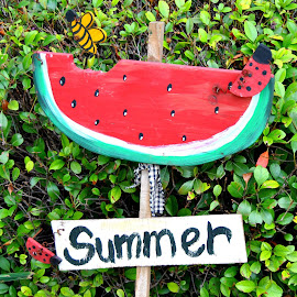 Still using my watermelon yard sign that Meri made me years ago. Still looks cute as ever. Thank you sweet cousin. <3 by Sherri Murphy - Novices Only Objects & Still Life ( signs, bee, watermelon summer, fun, ladybug )