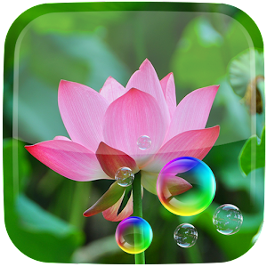 Lotus Live Wallpaper.apk 3.1