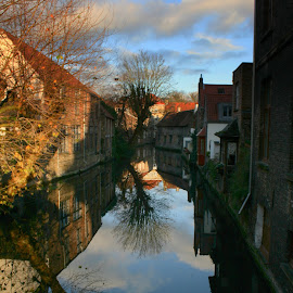 Brugge by Ron Jnr - Buildings & Architecture Public & Historical ( water, clouds, old buildings, blue sky, tree, light and dark colours, belgum, reflections, brugge, canal )