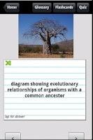 Screenshot of 1000 Biology Terms & Quiz