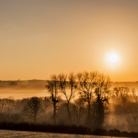 Misty golden sunrise by Stephen Tolley - Landscapes Sunsets & Sunrises