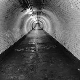 Long tunnel by Shona McQuilken - Buildings & Architecture Other Interior ( lights, circles, tiles, london, black and white, underground, tunnel )