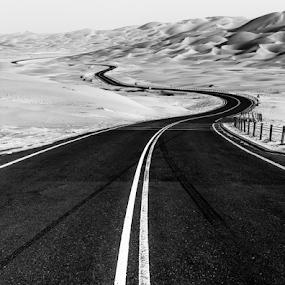 Road to Liwa  by Babar Swaleheen - Black & White Landscapes ( sand, camel, dunes, desert, b&w, uae, safari, road, auh,  )