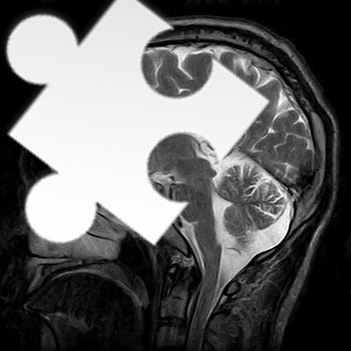 休閒App|醫學圖像拼圖 LOGO-3C達人阿輝的APP