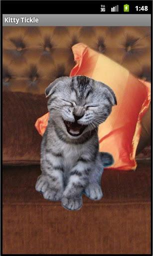 Kitty Tickle