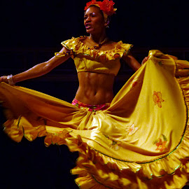 Samba by Deborah Russenberger - People Musicians & Entertainers ( dance,  )