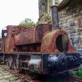 Fox, walker & Sons  by Michelle Louise Scoplin - Transportation Trains ( railway, train, bristol, steam )