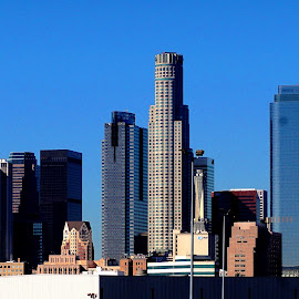 Los Angeles by Ricardo Camacho - City,  Street & Park  Skylines ( skyline, skyscrapers, los angeles, downtown, city,  )