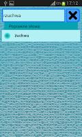 Screenshot of Słownik Ortograficzny polski