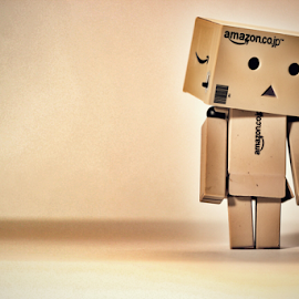 Danbo Alone by Hasnain Rizvi - Artistic Objects Toys ( 1.8, danbo, danboard, 50mm,  )