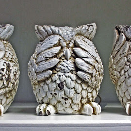 Three wise owls by Michael Moore - Artistic Objects Other Objects