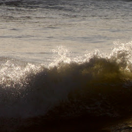 Surfs Up by Jason Brooks - Sports & Fitness Surfing ( san diego, sunset, hang left, waves, surf )
