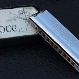 Dannecker Centurion Chrome: Love by Margaret Gorman - Artistic Objects Musical Instruments ( love, blues harp, dannecker, chrome, harmonica )